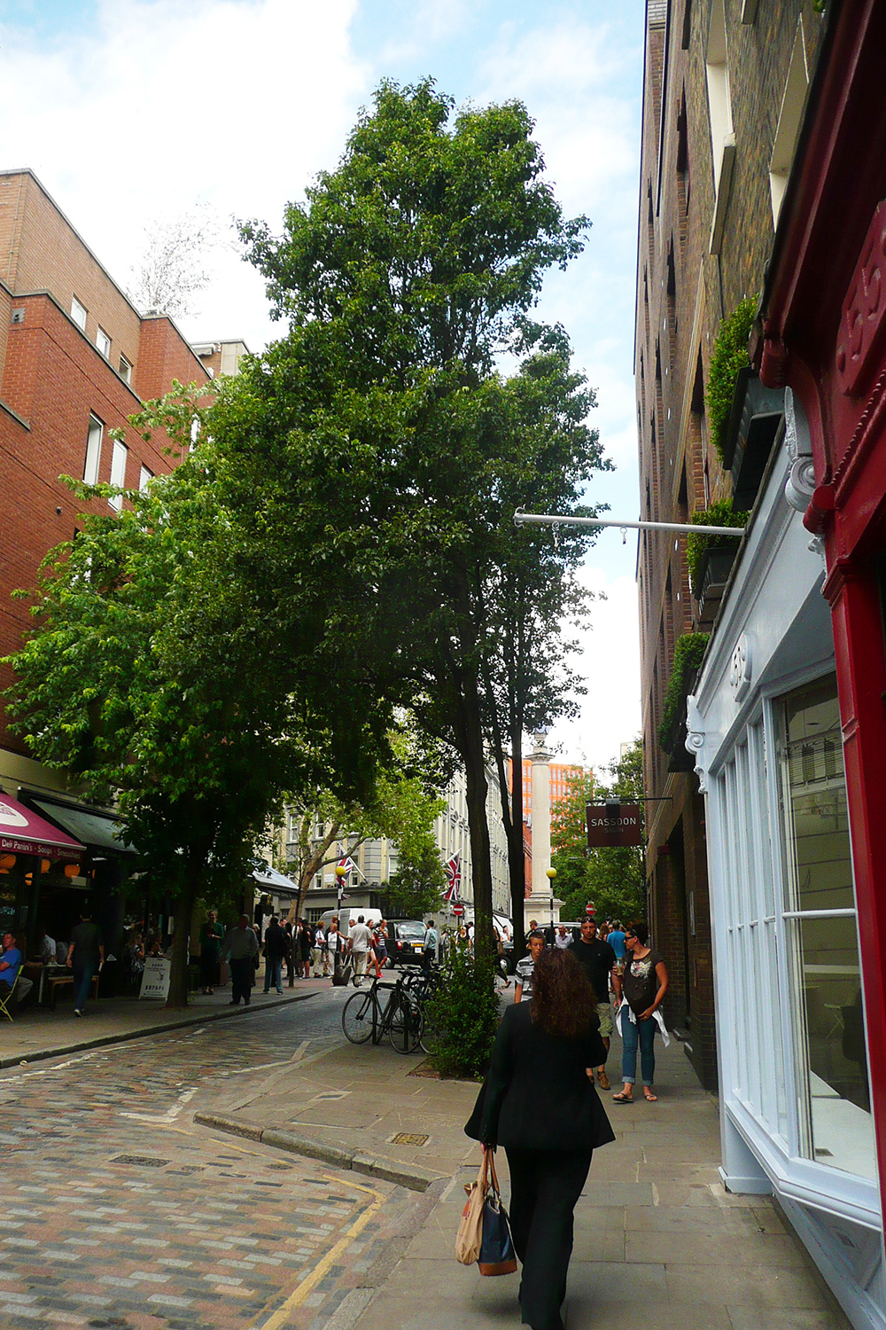 Monmouth Street tree clusters.