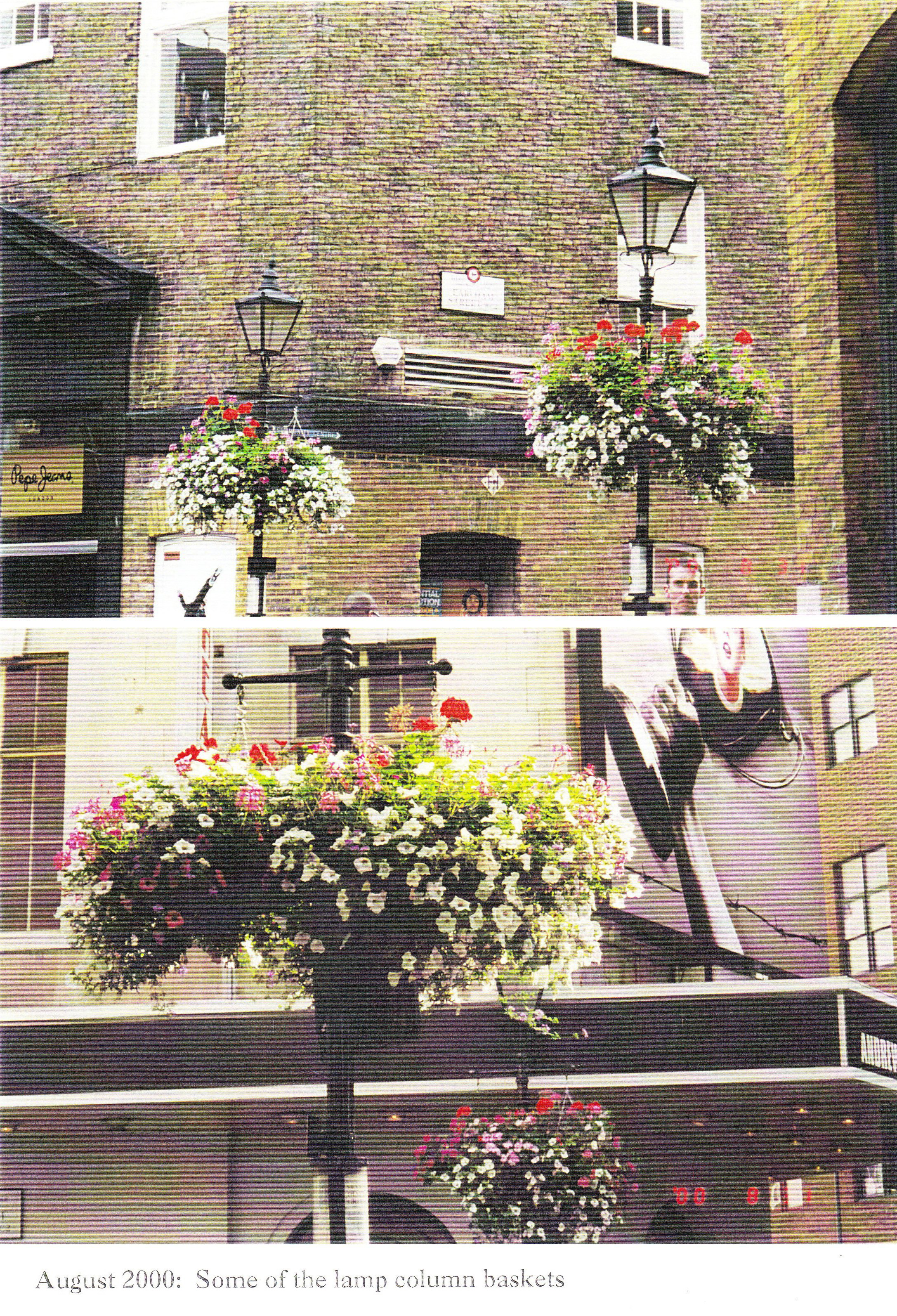 Hanging baskets planted by the children, in Earlham Street.